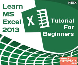 MSExcel 2013 Tutorial